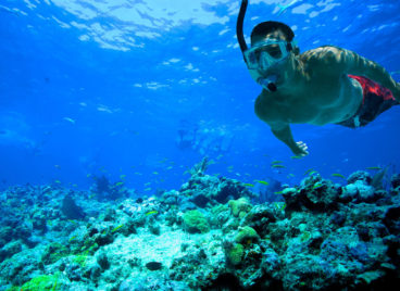 Where to go Snorkeling in Playa del Carmen